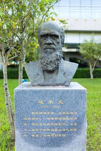 生物学家达尔文雕塑