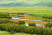 草原湿地红草地秋色