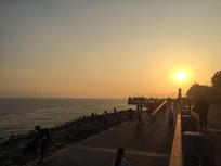 红树林海边夕阳