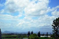 绿色原野和蓝天白云风景