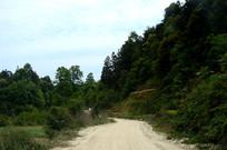顺化乡至水口镇的公路