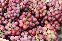 紫色葡萄高清图