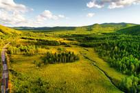 绿色林海风景 (航拍)