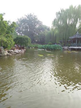 宣武艺园的园林一景