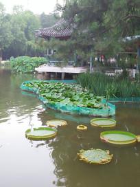 中式的园林景观一角