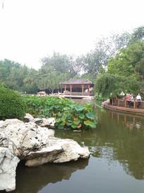 怡人的夏日园林景观