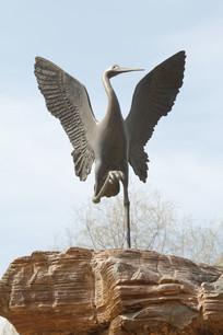 展翅的丹顶鹤铜雕