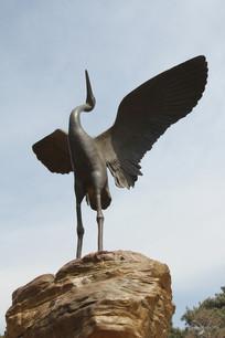 振翅的丹顶鹤铜雕