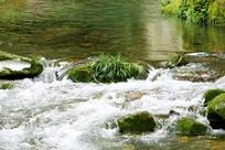 矿泉水小河流