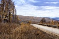 森林林间公路