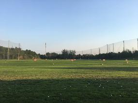 阳光下的高尔夫练习场