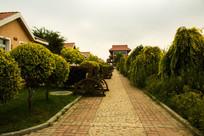 别墅区园林景观路