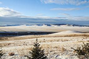 额尔古纳湿地白雪覆盖的麦田