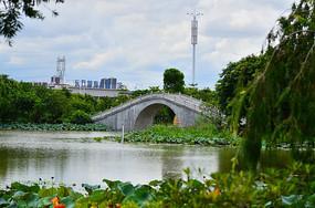 小桥湖泊风光图片