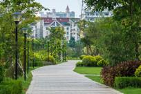 红楼滩公园的道路