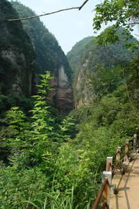 石柱沟的绿色植被