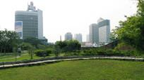 高楼大厦公园风景图片