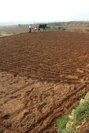 山区农民传统方式播种小麦