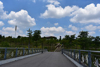 五象湖公园桥面风景
