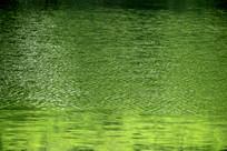 绿色水纹背景