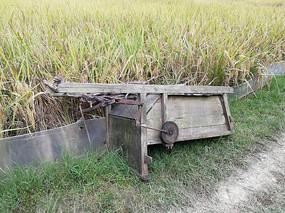 稻田边的打谷机