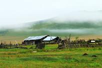 晨雾迷漫的乡村农家