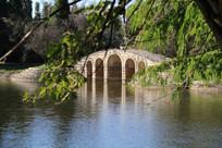 大树前的湖水与拱桥
