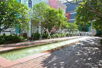 澳门渔人码头城市广场花园