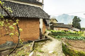 高山村落的小道