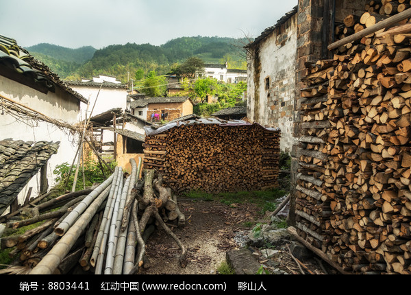 农户制茶的燃料图片