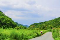 千山积翠山公路与两边山林