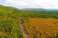 秋季林海公路风景 (航拍)
