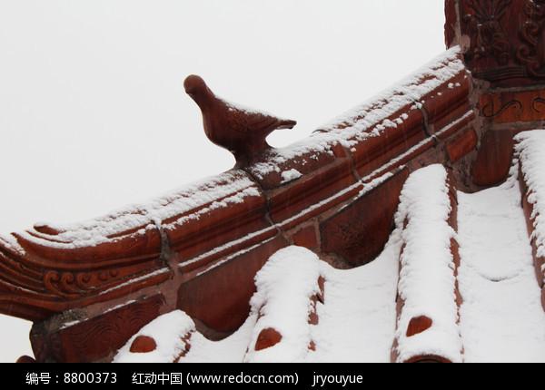 雪花飘落农村的琉璃瓦建筑图片