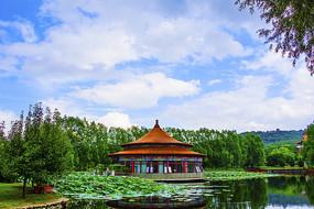 鞍山玉佛山书画院与池塘