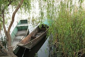 湖畔边停泊的渔船