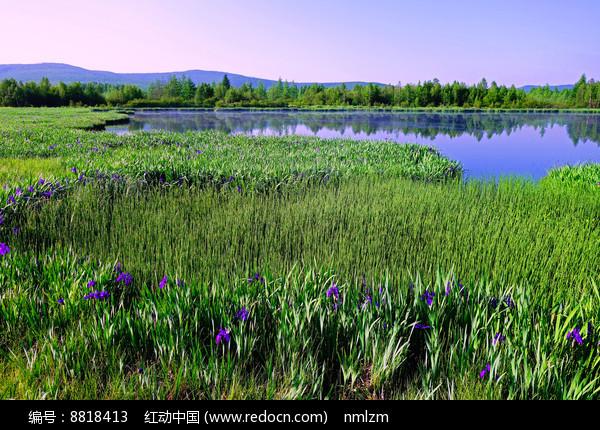 大兴安岭马兰湖风光 图片
