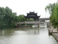 大运河上的枫桥与岸边柳树