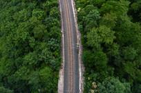航拍树林里的铁路