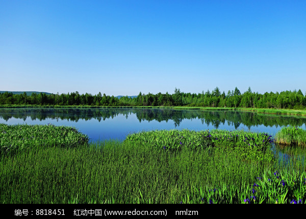 林海之中的湖泊 图片