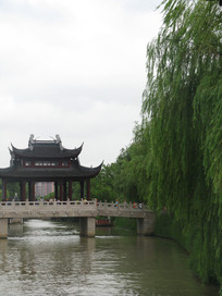 杨柳岸旁的枫桥