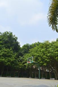 永泰乒乓体育公园篮球场