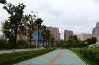 贵阳市区人行道与绿化带