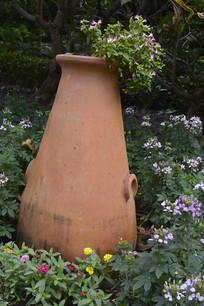 花瓶与蓝猪耳