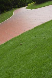 草坪与石砖路面