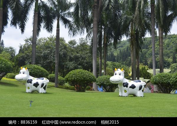 两只可爱的假奶牛图片