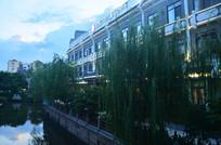 黄昏河岸柳树古建筑图片