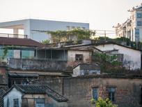 惠城区市区的老房子