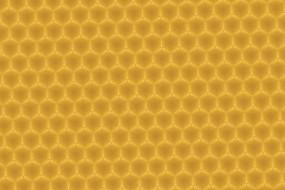 六角形纹理