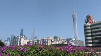 美丽的花城广州建筑图片