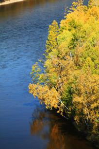 森林河流秋色